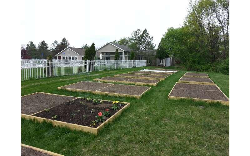 garden area near apartments