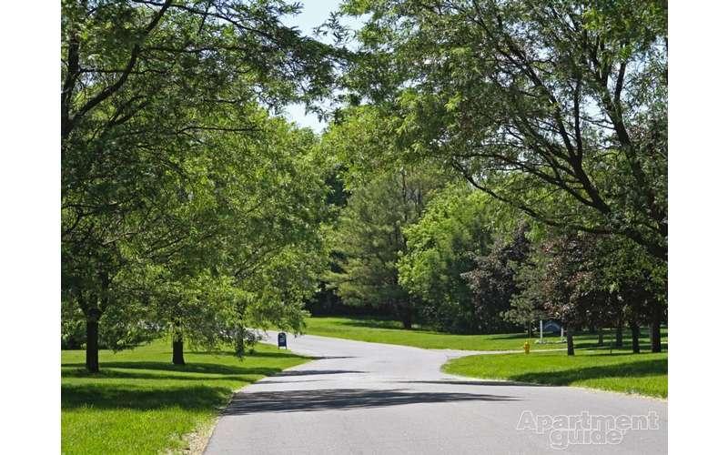 trail leading through a park