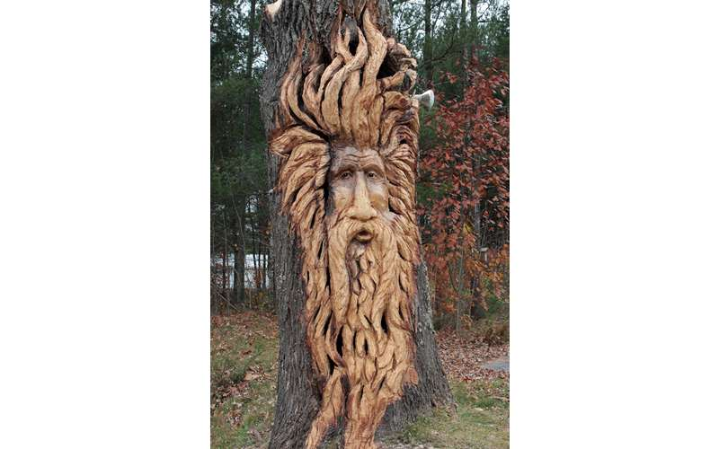 elaborate carving of a bearded, long haired face in a tree