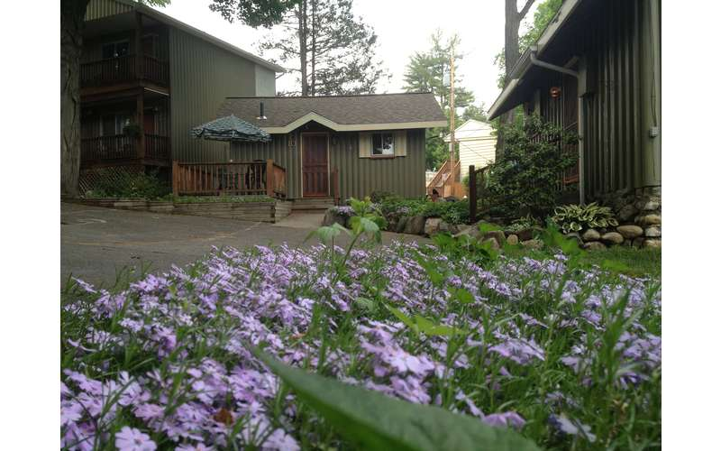The Balsam Motel and Cottages (4)