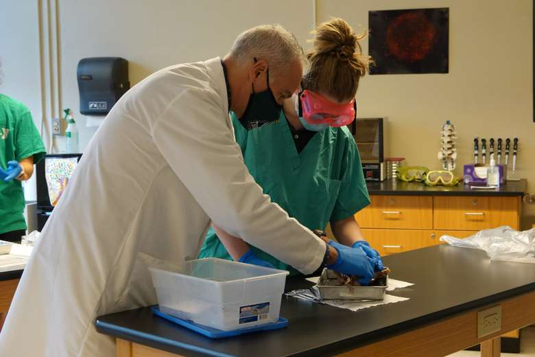 Dr. Wells assists a student in biology.
