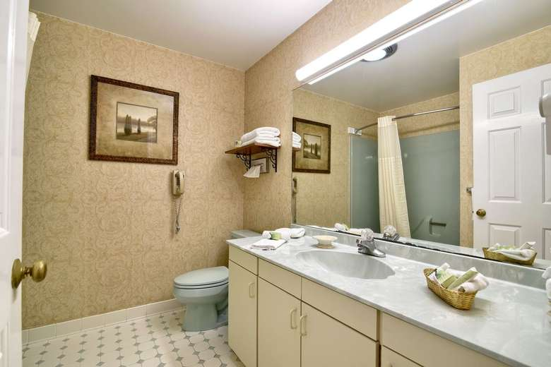 bathroom with sink on the countertop, large mirror, and toilet in the corner