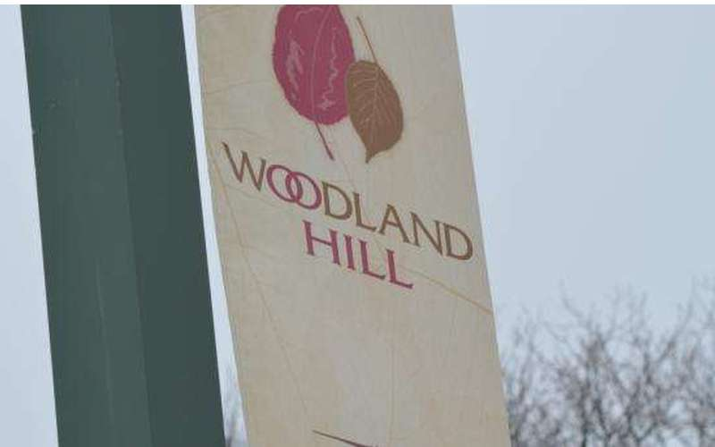 Woodland Hill Montessori School (13)
