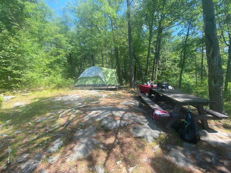 tent and picnic table in campsite