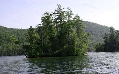 an island on a lake with thick and tall green trees, and you can see mountains in the far background