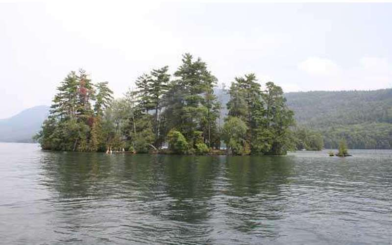a small island with tall green trees on a lake