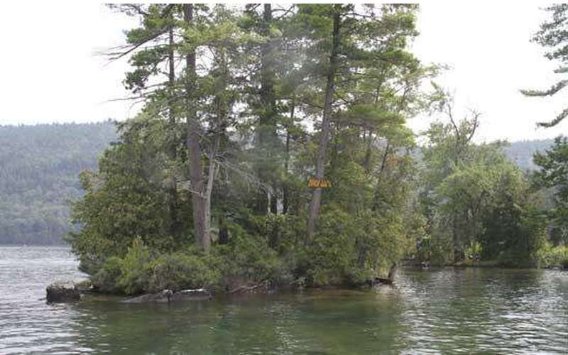 a small island on a lake with tall green trees