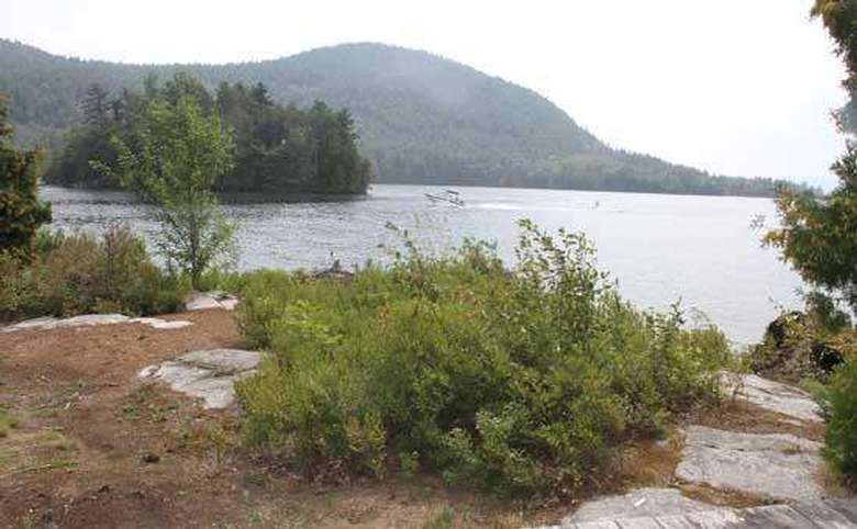 the shoreline with bushes, a lake in the background, and a mountain landscape