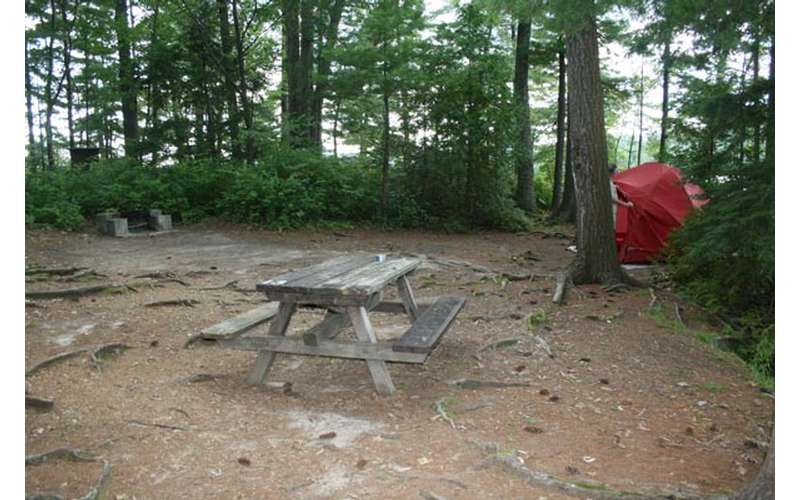 a picnic table on the ground with roots
