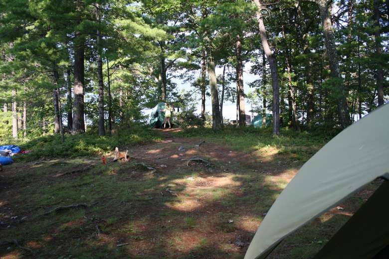 a campsite with roots on the ground, a tent to the side, and people in the back