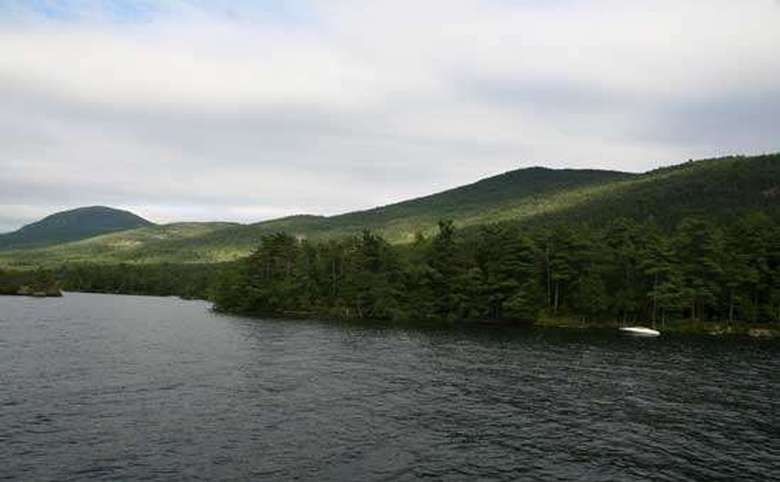 the shoreline of a lake with lots of trees and mountains in the background