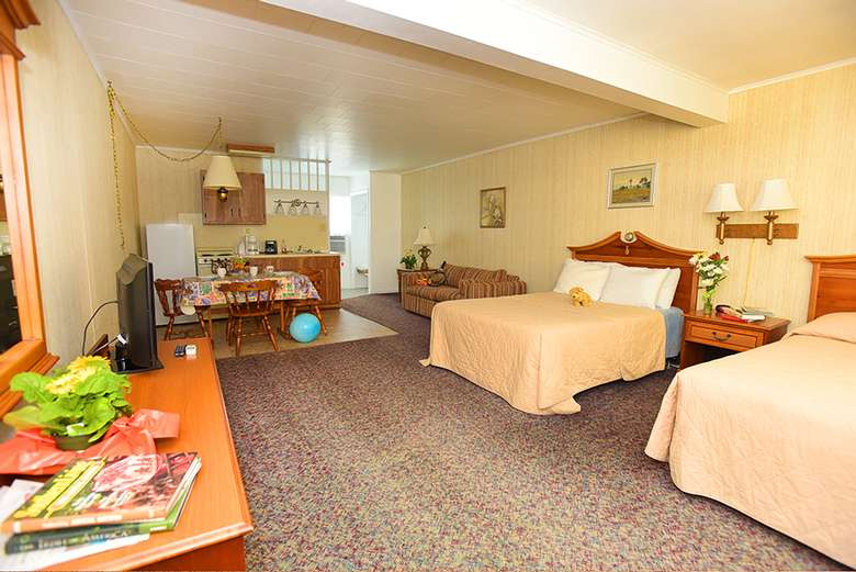 two beds in a large bedroom