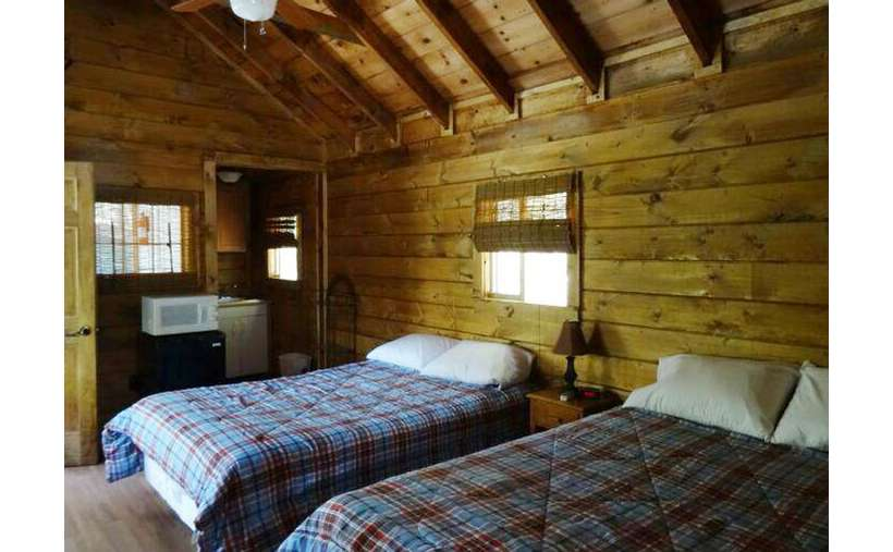 two beds with checkered blankets ina  cabin