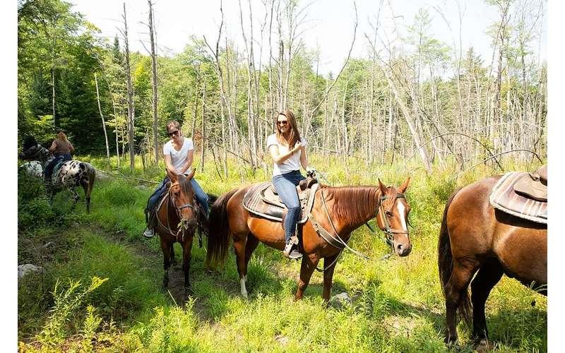 group of horseback riders