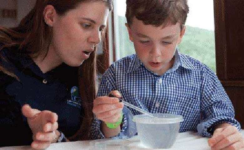 A boy in a plaid shirt receives instruction on a science project from a woman in a blue polo