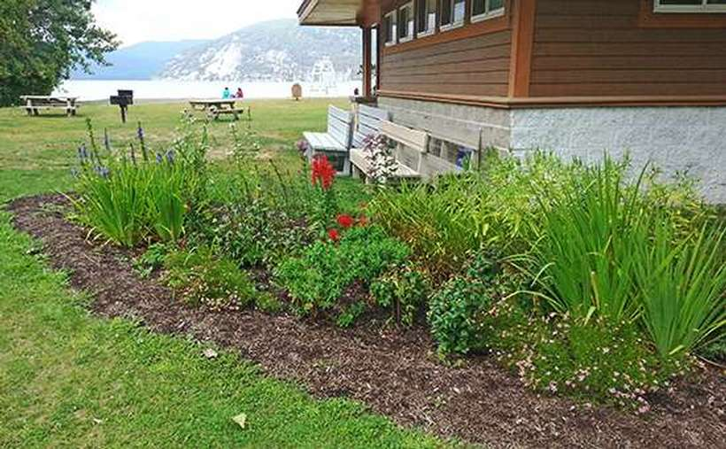 Greenery and flowers in a native plant garden with picnic tables and Lake George in the background