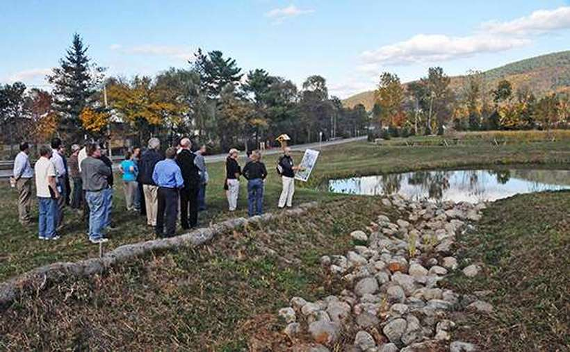 A person explaining a man-made wetland featuring a ditch with rocks to divert and treat stormwater