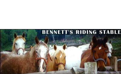 "Row of horses with words that say ""Bennett's Riding Stable"""