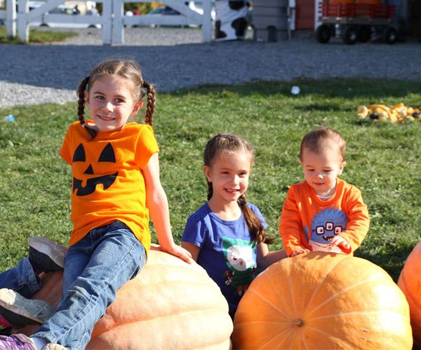 three kids sitting on pumpkins