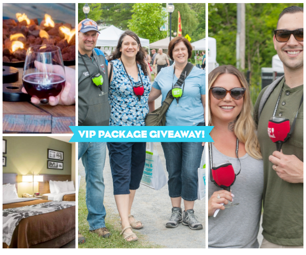collage of people at the adirondack wine & food festival
