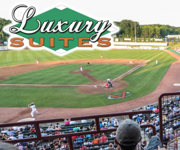 luxury suite rental at a baseball game