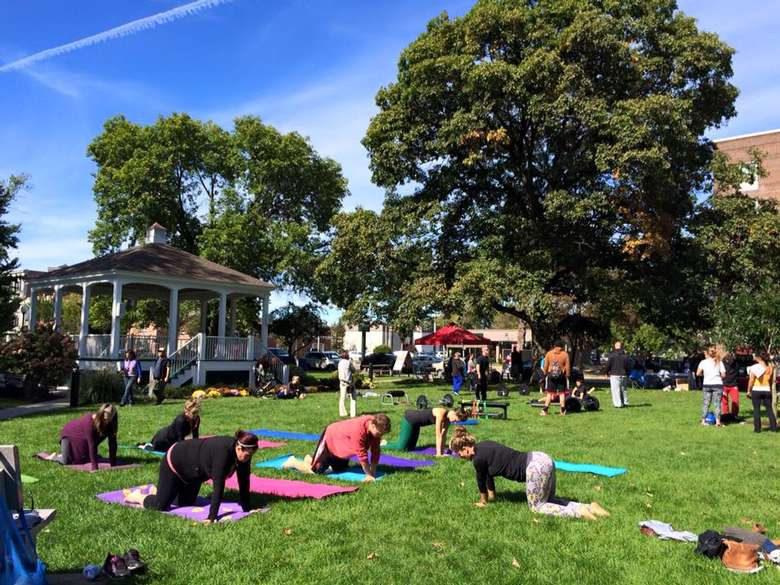 people doing yoga moves in a park