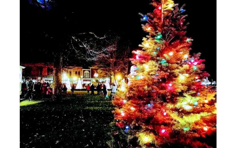 lit up Christmas tree