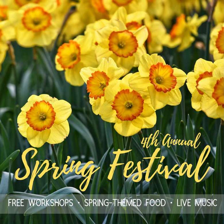 4th Annual Spring Festival Banner
