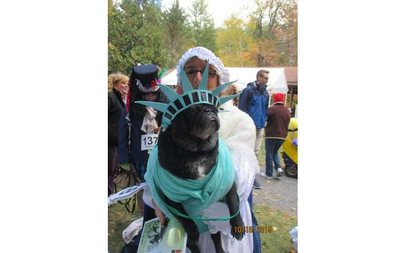 a pug with a statue of liberty costume