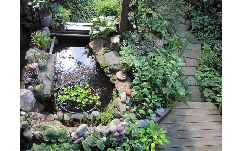 statue in garden vines and plants - Hidden Garden