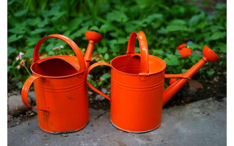 burnt orange watering cans
