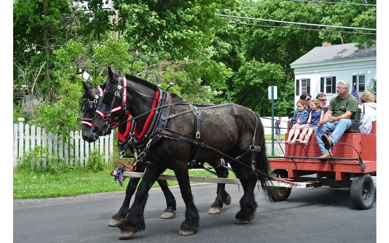 horse drawn wagon and carriage