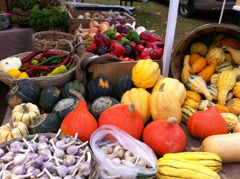 an assortment of vegetables displayed on a table