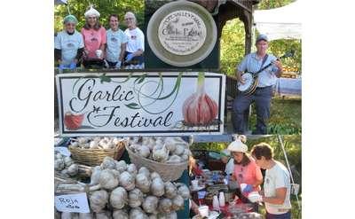 garlic and garlic festival banner