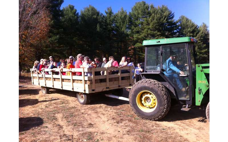 Wagon Ride at Toad Hill