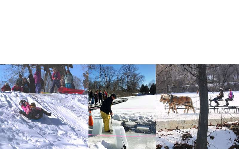 sledding and winter activity