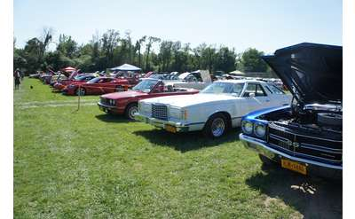 line up of classic cars