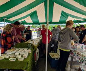 people under tent cheese sampling