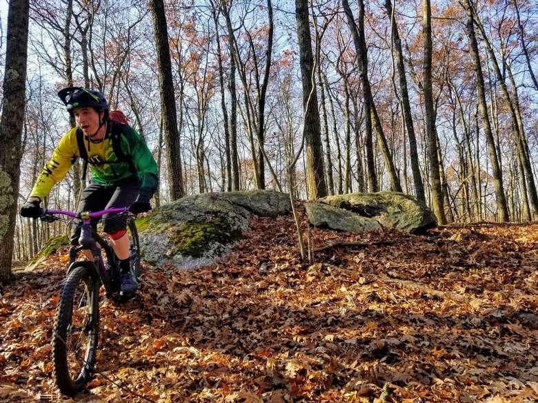 mountain biker in fall