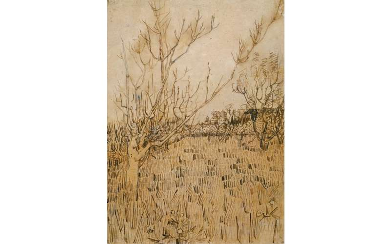 a painting in shades of brown of trees in a field