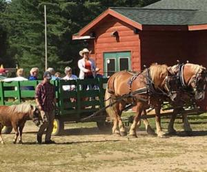 Scenic Fall Horse and Wagon Rides