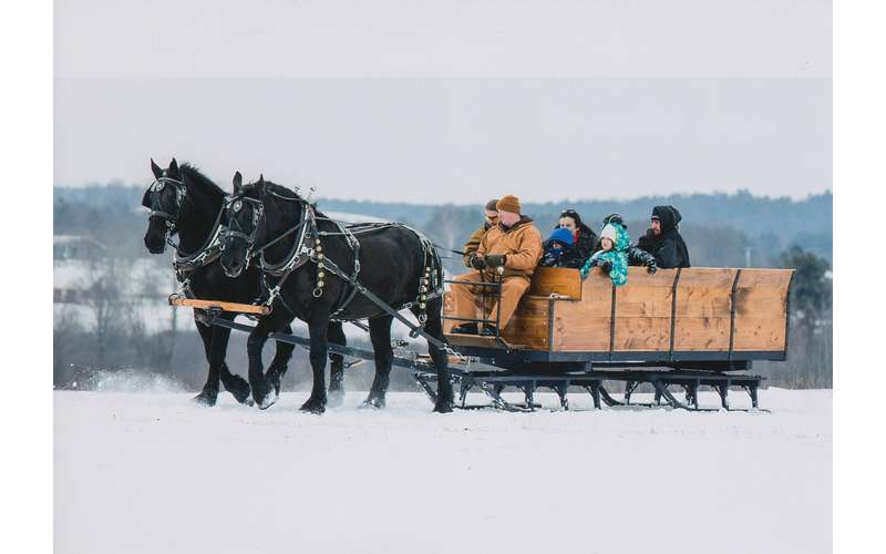 Horse Drawn Sleigh Rides at Lapland Lake (1)