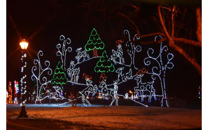 21st Annual Price Chopper/Market 32 Capital Holiday Lights in the Park (3)
