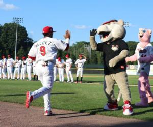 baseball player about to high five the mascot