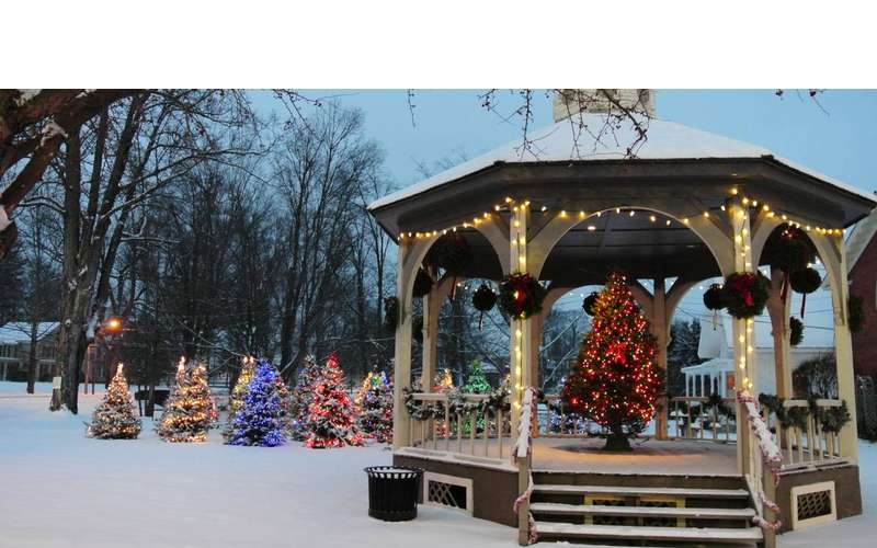 gazebo and park with trees and holiday lights