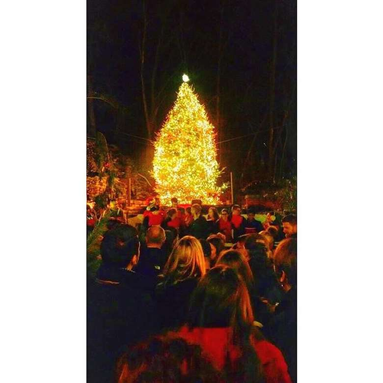 Tree Lighting 2018 4th Annual Miracle On 15th Street At