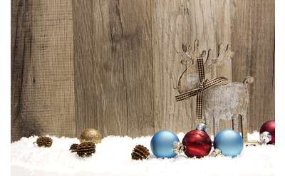 ornaments in snow