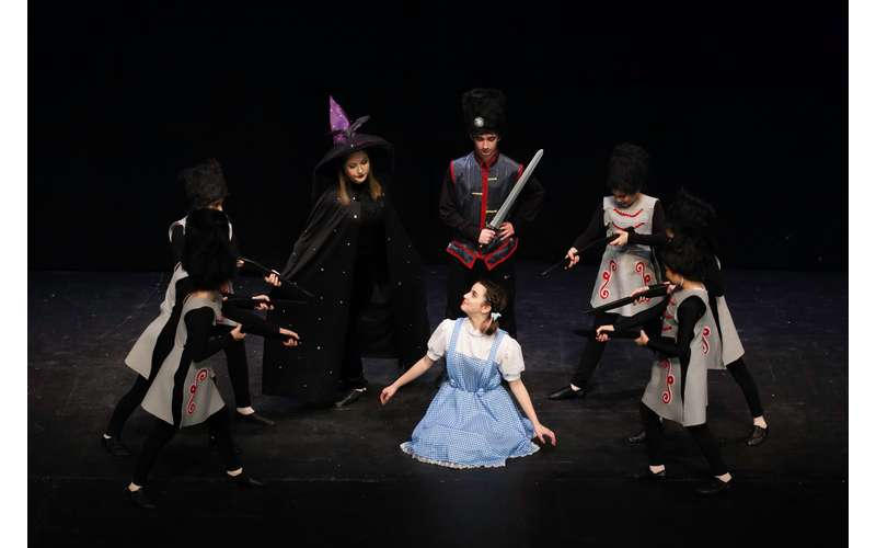 dorothy surrounded by wicked witch and guards