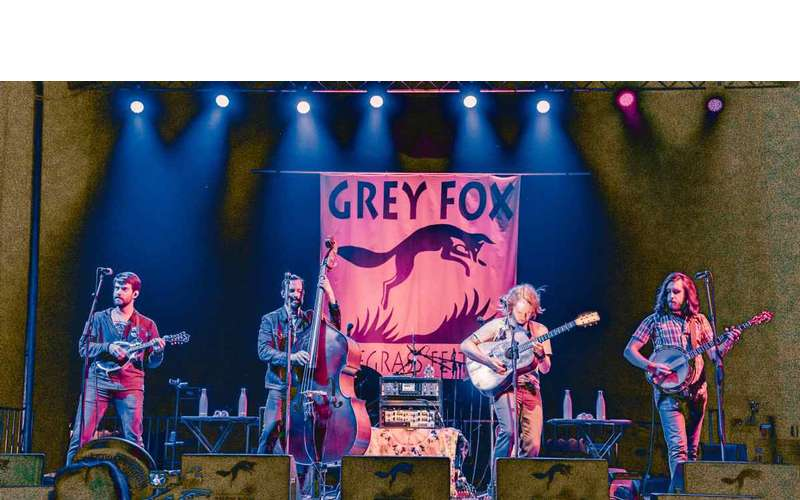 band with grey fox banner behind them