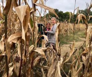 kids in corn field
